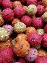 Krmné boilies - Ananas